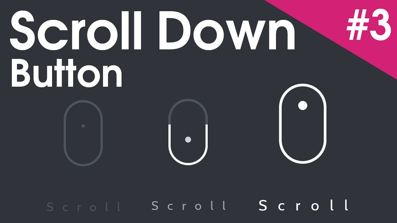 Html scroll to bottom