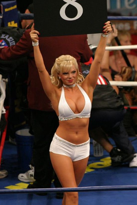 Busty boxing ring girls