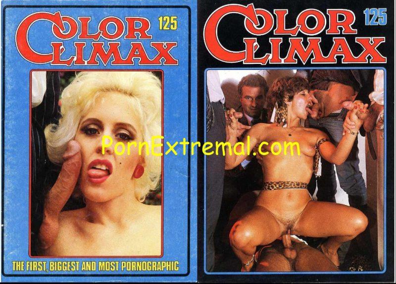 Color climax vintage porn magazines