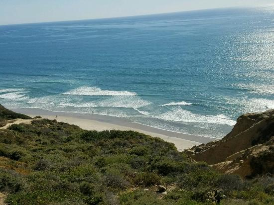 Blacks beach san diego women