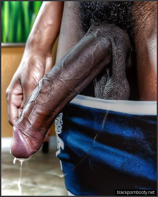 Black penis en erection