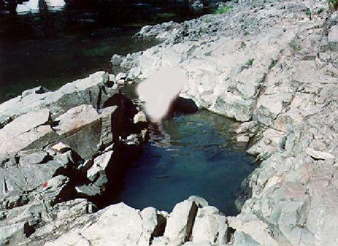 Carson hot springs washington