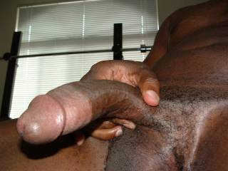 Big black cock head