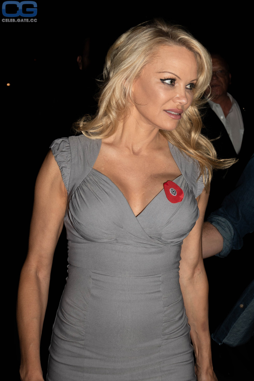 Pamela anderson naked fakes