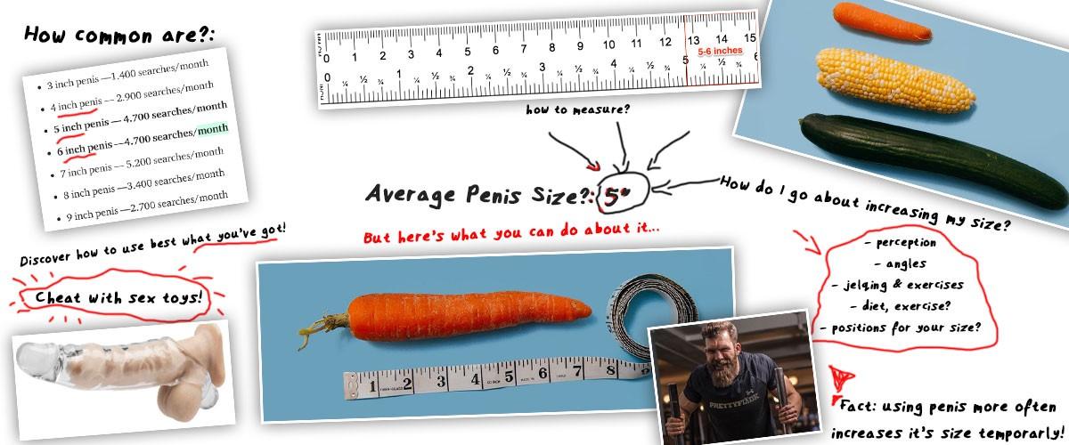 Average size penis porn star