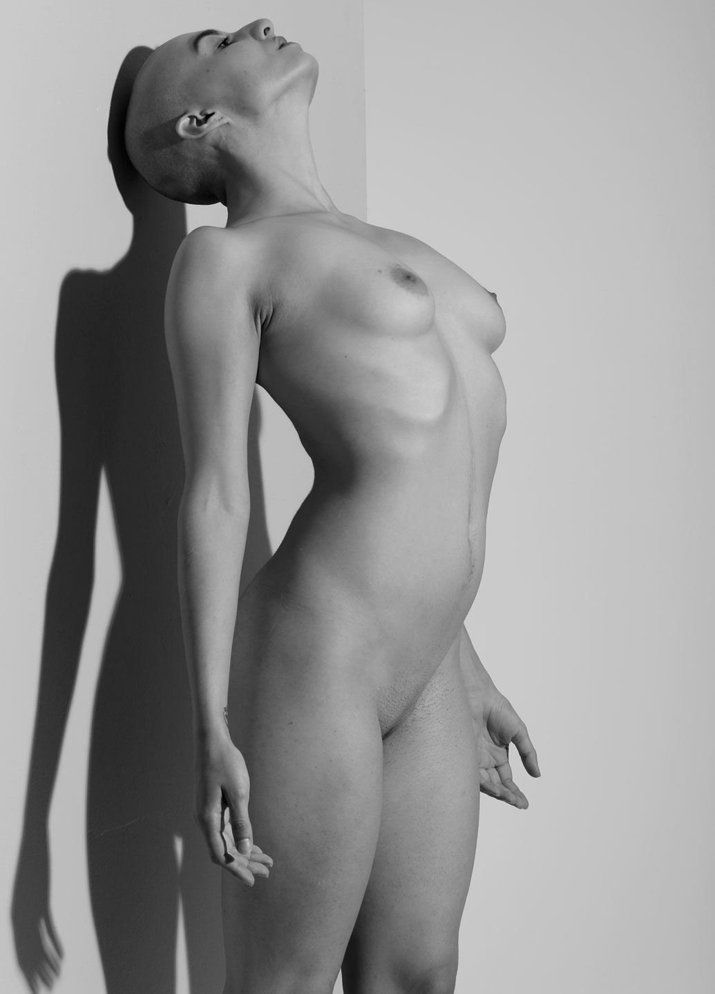 Beautiful bald women nude