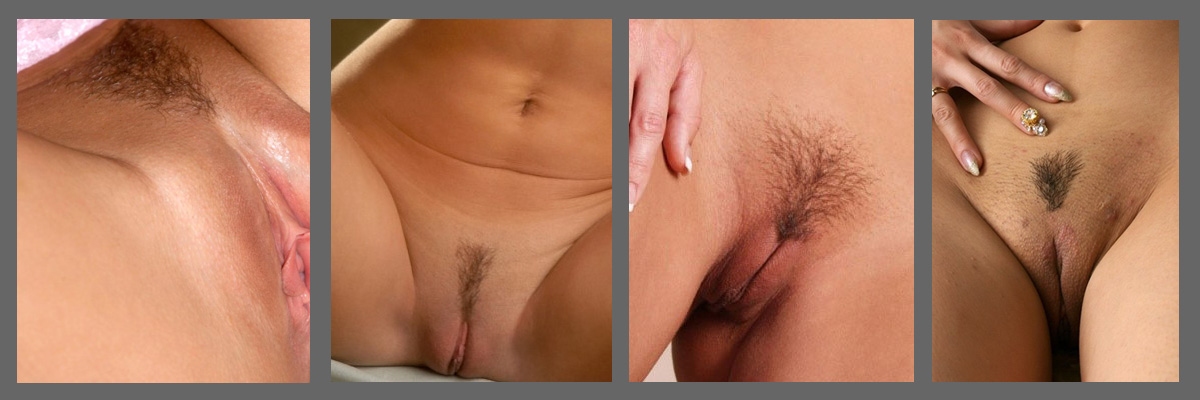 Styles for a pussy shave