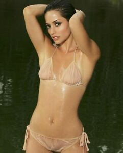 Emmanuelle vaugier in bikini