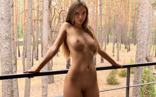 Vagina boob tit porn breast