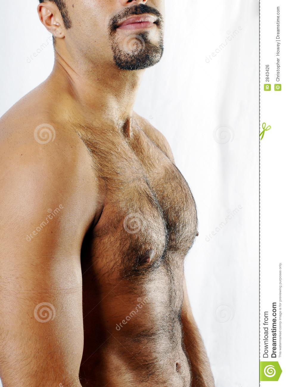 Muscles chest free hairy