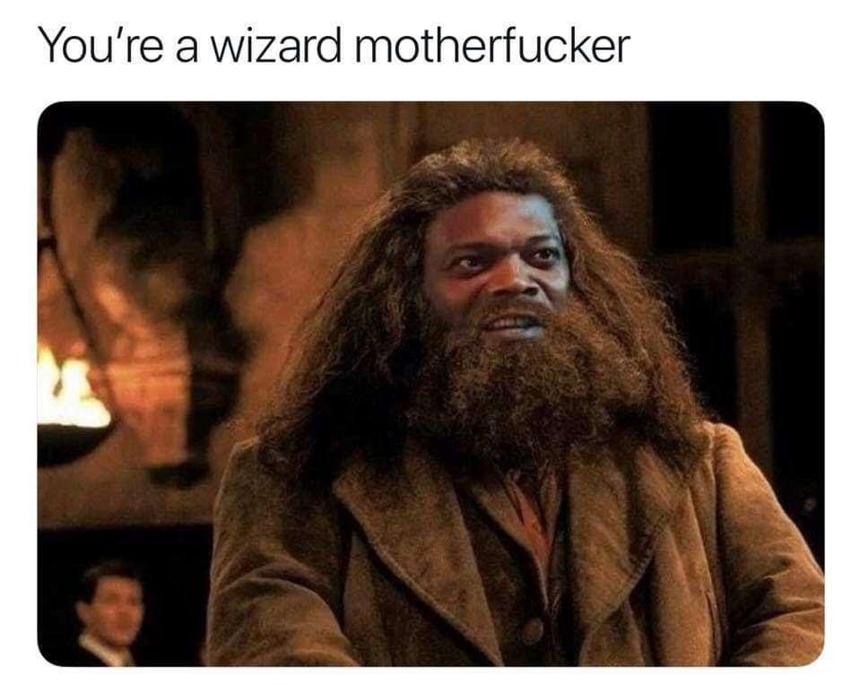 What if harry potter meme